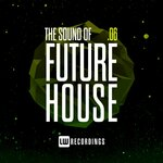 The Sound Of Future House Vol 06