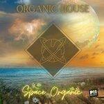 Organic House - Space Organic