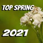 Top Spring 2021