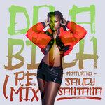 Do A Bitch (Remix)