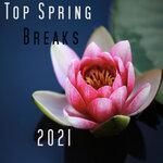 Top Spring Breaks 2021