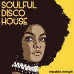 Soulful Disco House (Sample Pack WAV)