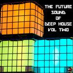 Future Sound Of Deep House Vol 2