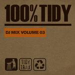 100% Tidy Vol 3