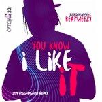 You Know I Like It (Ian Vaughnshay Remix)