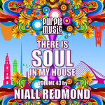 Niall Redmond Presents: There Is Soul In My House Vol 43