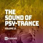 The Sound Of Psy-Trance Vol 13