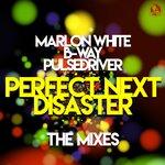 Perfect Next Disaster (The Mixes)