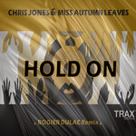 Hold On (Rogier Dulac Remix)