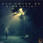 Can House Be Cinematic?