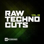 Raw Techno Cuts Vol 13