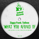 What You Afraid Of (Disco Phobia Mix)