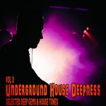 Underground House Deepness Vol 3 - Selected Deep Gems & House Tunes