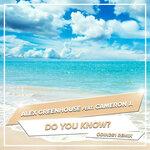 Do You Know? (ODIN261 Remix)
