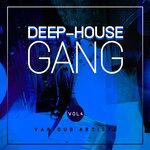 Deep-House Gang, Vol 4