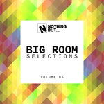 Nothing But... Big Room Selections, Vol 05