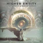 Higher Entity