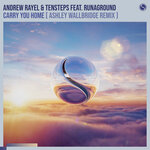 Carry You Home (Ashley Wallbridge Extended Remix)