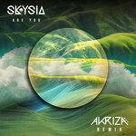 Are You (Akriza Remix)