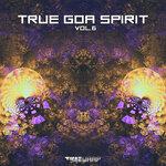 True Goa Spirit Vol 6 (unmixed tracks)