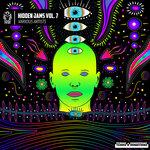 Hidden Jams Vol 7