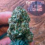 This Bud Is For Techno
