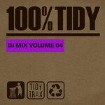 100% Tidy, Vol 4