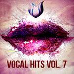 Vocal Hits, Vol 7