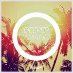 Deeper Variance Vol 29