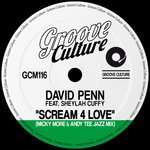 Scream 4 Love (Micky More & Andy Tee Jazz Mixes)