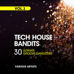 Tech House Bandits (30 Ultimate Groove Gangsters), Vol 1