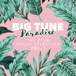 Big Tune Paradise - The Club House Selection Vol 1