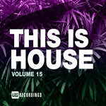 This Is House, Vol 15