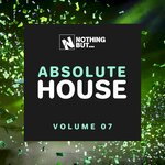 Nothing But... Absolute House, Vol 07