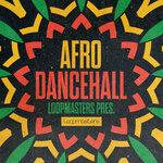 Afro Dancehall (Sample Pack WAV/LIVE)