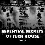 Essential Secrets Of Tech House Vol 5