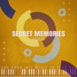 Secret Memories