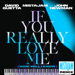 If You Really Love Me (How Will I Know) (MistaJam Remix)