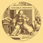 Variable Remixes