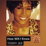 How Will I Know (Remix Edit)