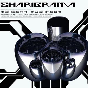 SHARIGRAMA - Mexican Mushroom