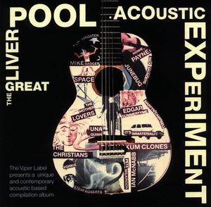 VARIOUS - The Great Liverpool Acoustic Experiment