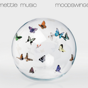 METTLE MUSIC - Moodswings (Exclusive Version)
