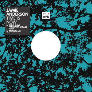 ANDERSON, Jamie - Time Is Now (remix)