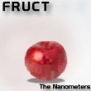 NANOMETERS, The - Fruct