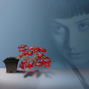 ROMA, Pablo - Sad Flowers (remixes)