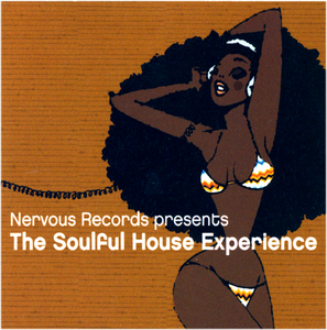 VARIOUS - The Soulful House Experience