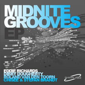 RICHARDS, Eddie/DIBBY DOUGHERTY/ROLAND VAN DEN TOORN/CHISEE/STEFAN BRANDT - Midnite Grooves EP