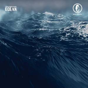 2 RARE PEOPLE - Ocean