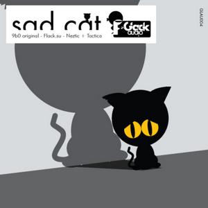 9B0 - Sad Cat